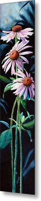 Purple Cone Flower 2 Metal Print by Hanne Lore Koehler
