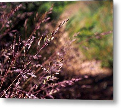 Purple Grass Metal Print by Kaleidoscopik Photography
