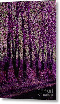 Purple Trees Metal Print by Carol Lynch