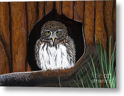 Metal Print featuring the painting Pygmy Owl by Jennifer Lake