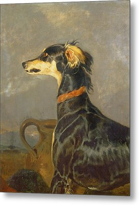Queen Victorias Favourite Dog, Eos Metal Print by Sir Edwin Landseer