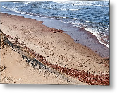 Quiet Beach Metal Print