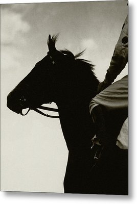Race Horse Gallant Fox Metal Print