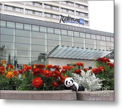 Radisson Blu Lietuva. Baby Panda Likes It Metal Print by Ausra Huntington nee Paulauskaite