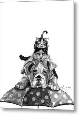 Raining Cats And A Dog Metal Print by J Ferwerda
