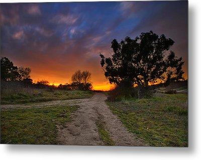 Rancho Santa Fe Sunset Metal Print by Larry Marshall