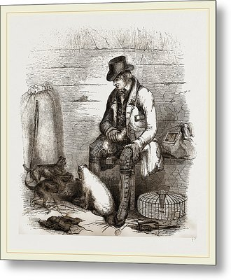 Rat-catcher And Terriers Metal Print by Litz Collection