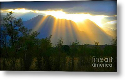 Rays From Heaven Metal Print by Michelle Frizzell-Thompson