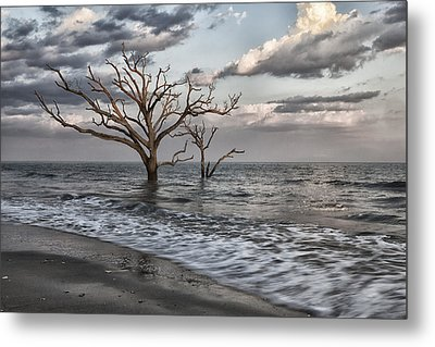 Reach For The Sky II Metal Print by Mike Lang