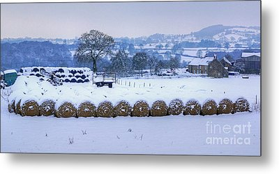 Ready For Winter Metal Print by David Birchall