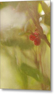 Red Berries Of The Bog Cranberry Metal Print by Roberta Murray
