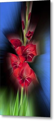 Metal Print featuring the photograph Red Gladiola by Mark Greenberg
