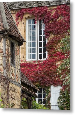 Metal Print featuring the photograph Red Ivy Window by Paul Topp