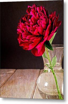 Red Peony Flower Vase Metal Print by Edward Fielding