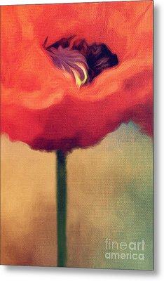Red Poppy Metal Print by Rosie Nixon