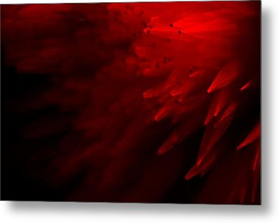 Metal Print featuring the photograph Red Skies by Dazzle Zazz