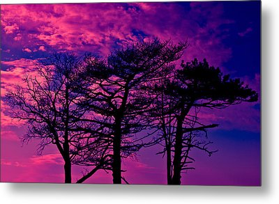 Metal Print featuring the photograph Red Trees by David Stine