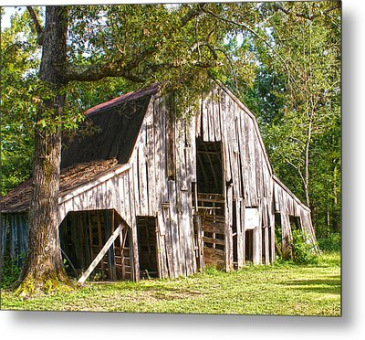 Refuge  Metal Print by Joe Bledsoe