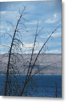 Metal Print featuring the photograph Remnants Of The Fire by Laurel Powell