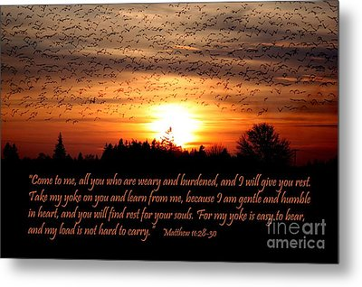 Rest In Him Metal Print by Erica Hanel
