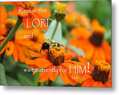 Rest In The Lord Metal Print by Barbara Stellwagen
