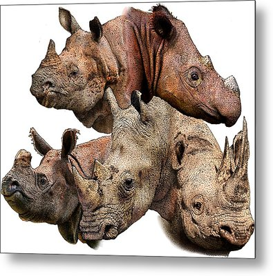 Rhino Collage Metal Print