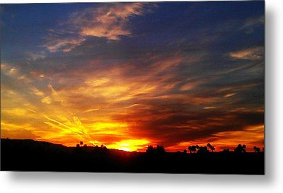 Rise N Shine Metal Print by Chris Tarpening