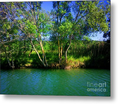 River Beauty Metal Print by Hanza Turgul