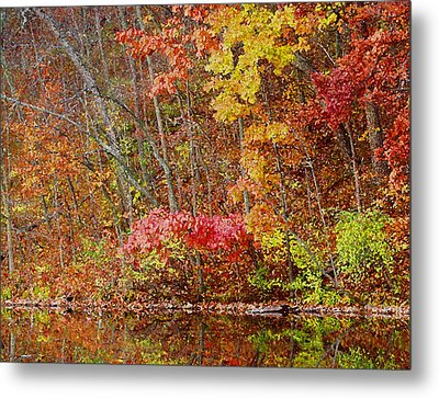 Riverbank Beauty Metal Print by James Hammen