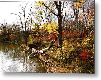 Riverfront In Fall Metal Print by Jocelyne Choquette