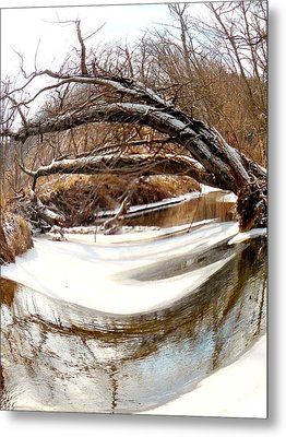 Rivers Eye Metal Print by Sharon Costa