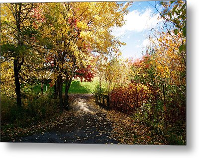 Road To Happyness Metal Print by Jocelyne Choquette