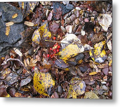 Rocks And Berries Metal Print by Leone Lund
