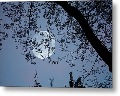 Metal Print featuring the photograph Romantic Moon  by Angel Jesus De la Fuente