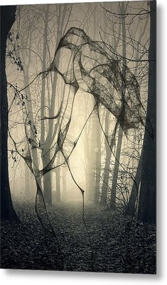 Roots That Hold  Metal Print by Jerry Cordeiro
