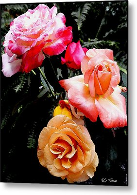 Metal Print featuring the photograph Roses Roses Roses by James C Thomas