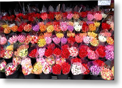 Rows Of Roses Metal Print by Amy Cicconi