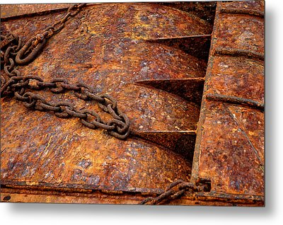 Metal Print featuring the photograph Rusty by Dorin Adrian Berbier