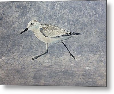 Metal Print featuring the painting Sandpiper by Stan Tenney