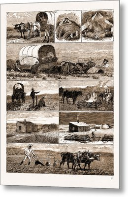 Scenes From An Emigrants Life In Manitoba Metal Print