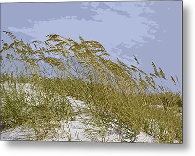 Metal Print featuring the photograph Sea Oats by Kathy Ponce