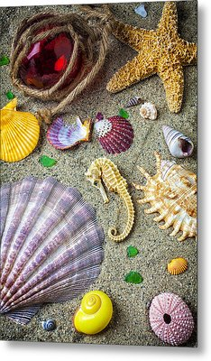 Seahorse With Many Sea Shells Metal Print by Garry Gay
