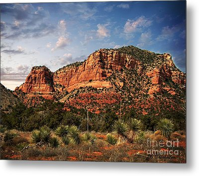 Metal Print featuring the photograph Sedona Vortex  And Yucca by Barbara Chichester