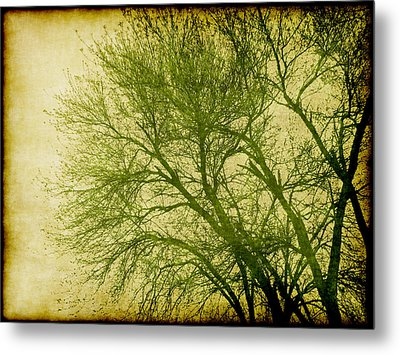 Serene Green 1 Metal Print by Wendy J St Christopher