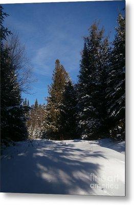 Shadows In The Snow Metal Print by Steven Valkenberg