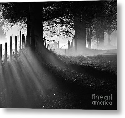 Metal Print featuring the photograph Shadows by Paul Noble