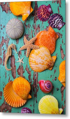 Shells On Old Green Board Metal Print