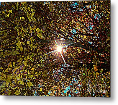 Metal Print featuring the photograph Shine On Me by Geri Glavis
