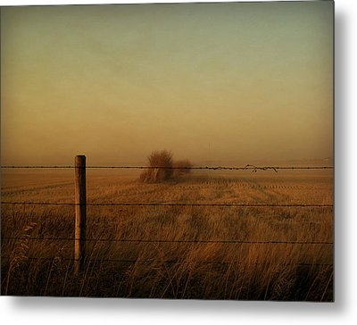 Silence Of Dusk Metal Print by Leanna Lomanski