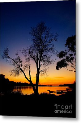 Metal Print featuring the photograph Silhouettes by Trena Mara